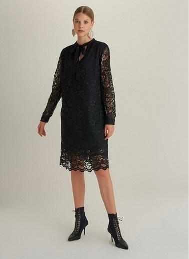 NGSTYLE Yaka Detaylı Dantel Elbise Siyah